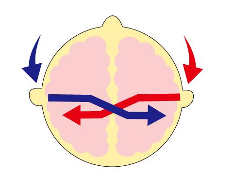 補聴器 片耳 両耳 どちらの耳か 両耳補聴器の仕組み